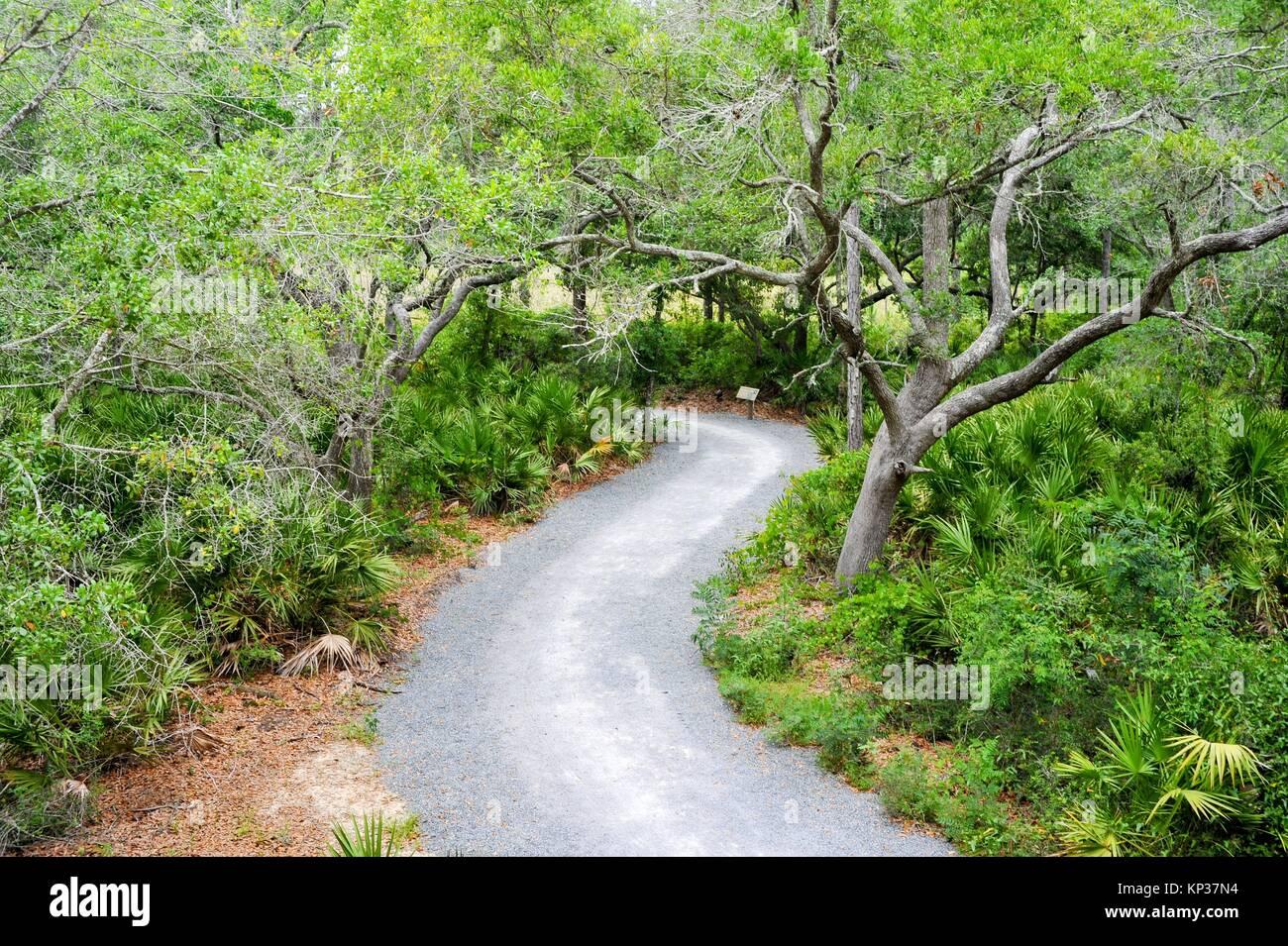 Apalachicola Natural Estaurine Research Reserve Franklin County Florida. - Stock Image