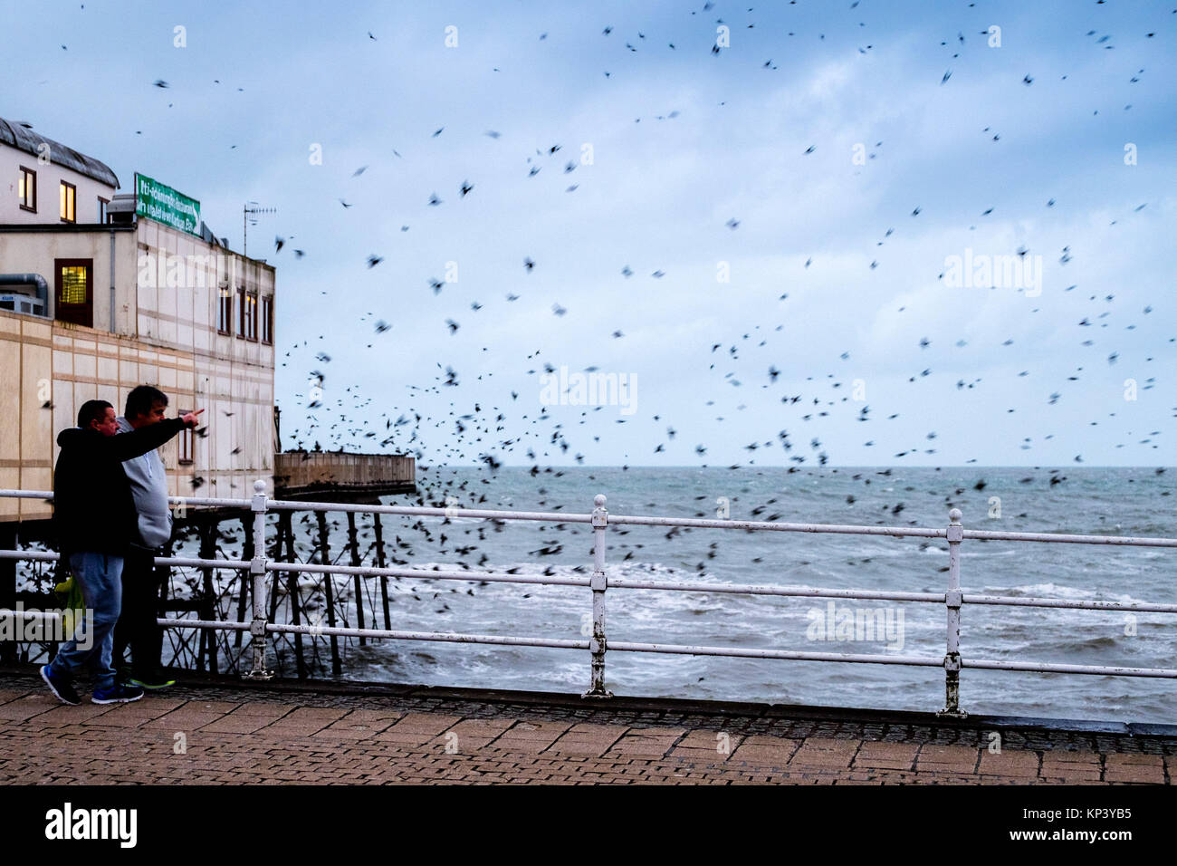 Aberystwyth, Wales, UK. 13 December 2017 UK Weather: On a blustery and grey December evening in Aberystwyth, Wales, - Stock Image