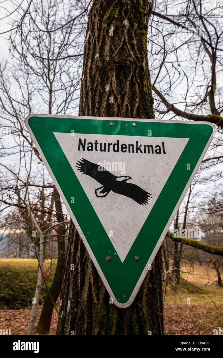 Environmental traffic sign in the middle of the forest - Stock Image