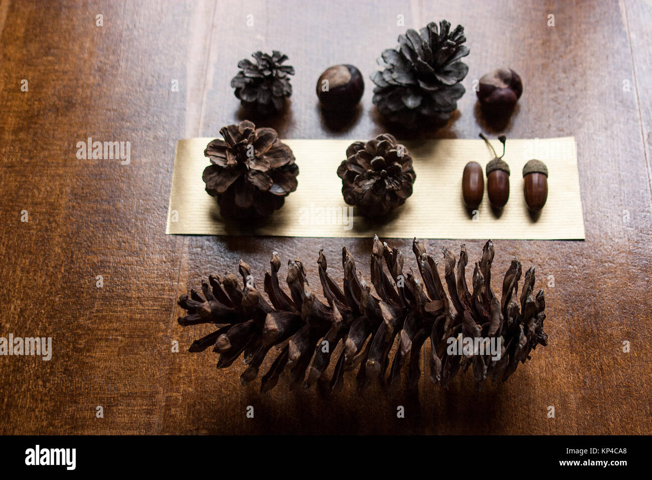 Pinecones on table - Stock Image