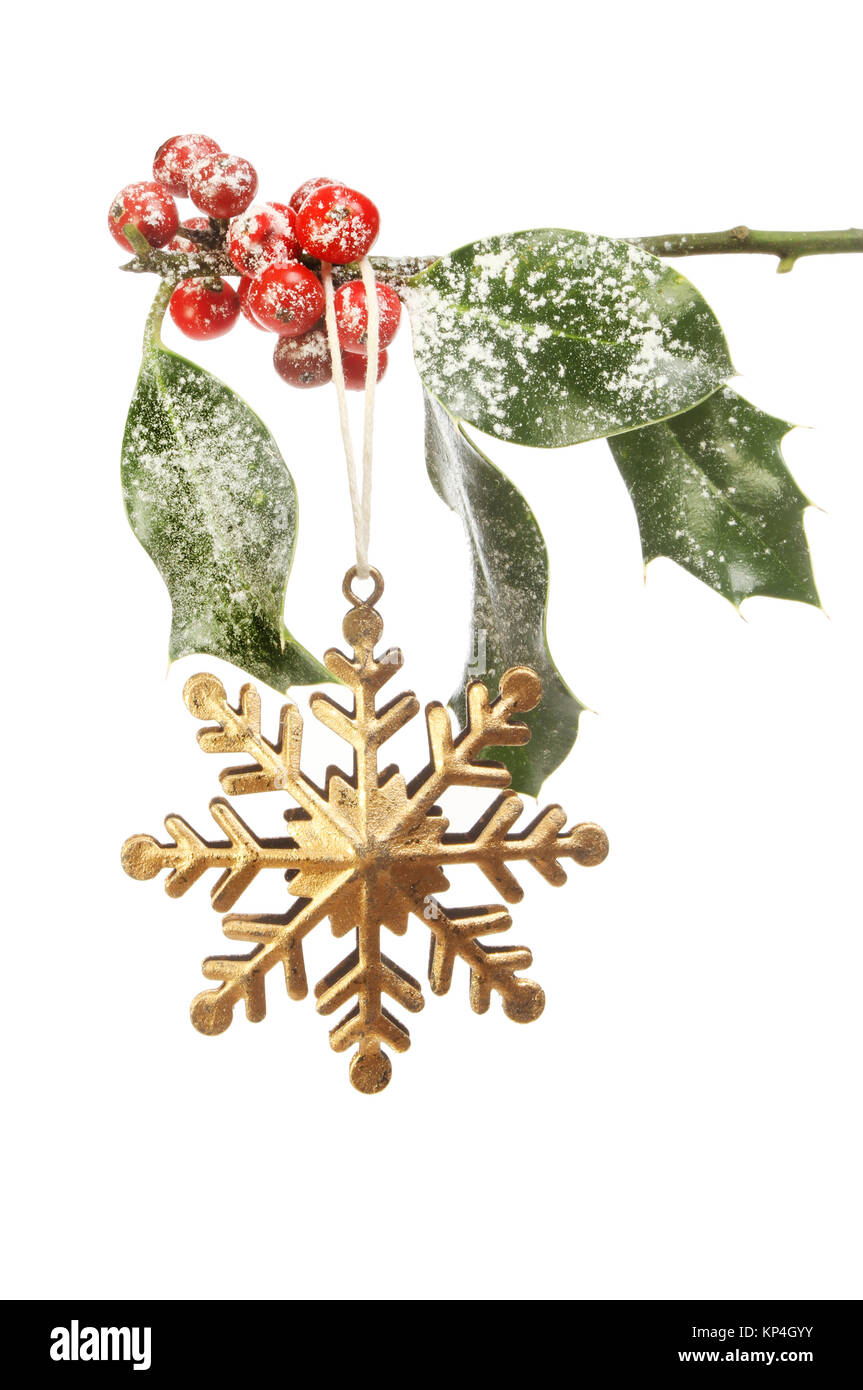 Snowflake star Christmas decoration hanging from snow dusted holly against a white background - Stock Image