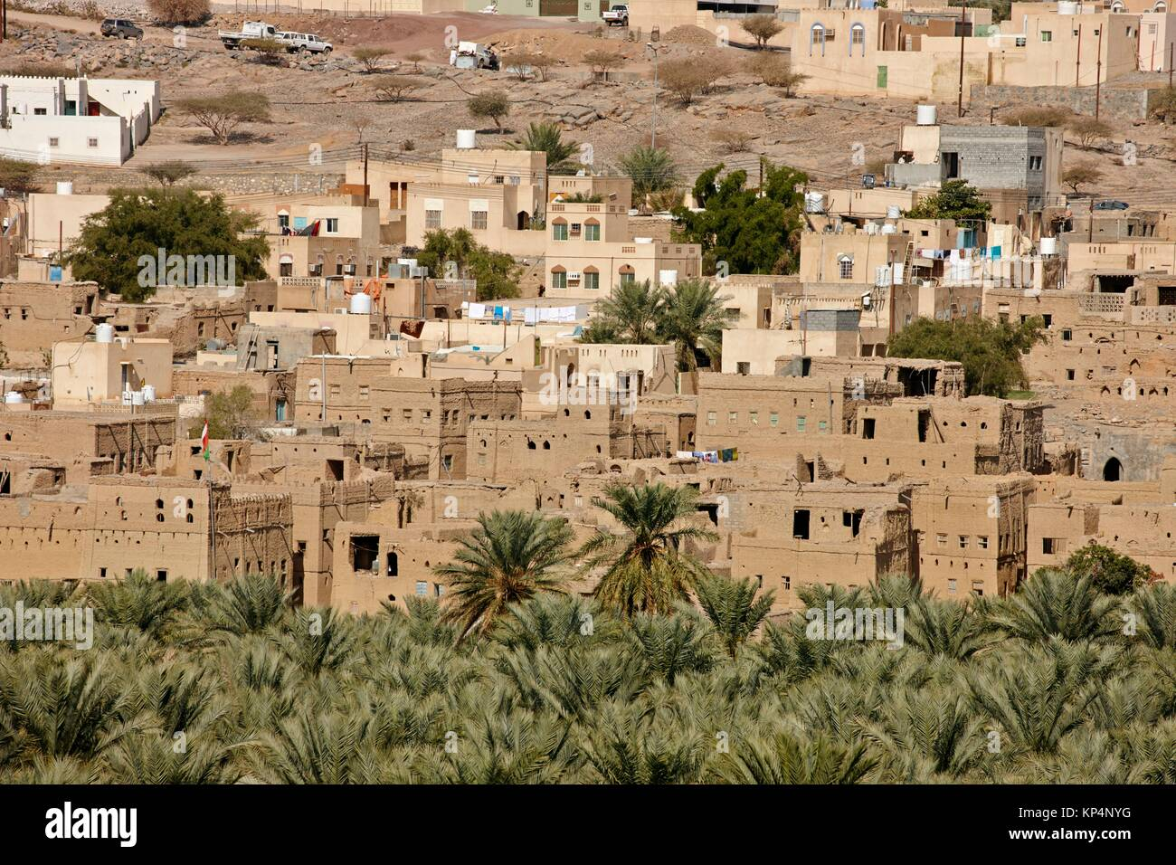 Palms and townscape. Historic town of Al Hamra, Oman. - Stock Image