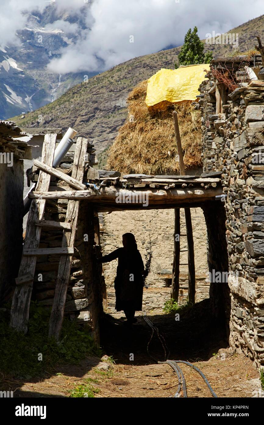 Kardang Village, Lahaul Valley, Himachal Pradesh, India. - Stock Image