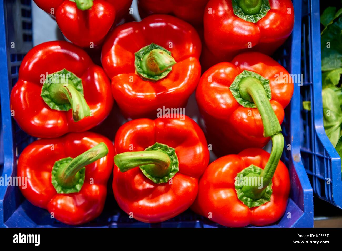 Red Peppers. - Stock Image