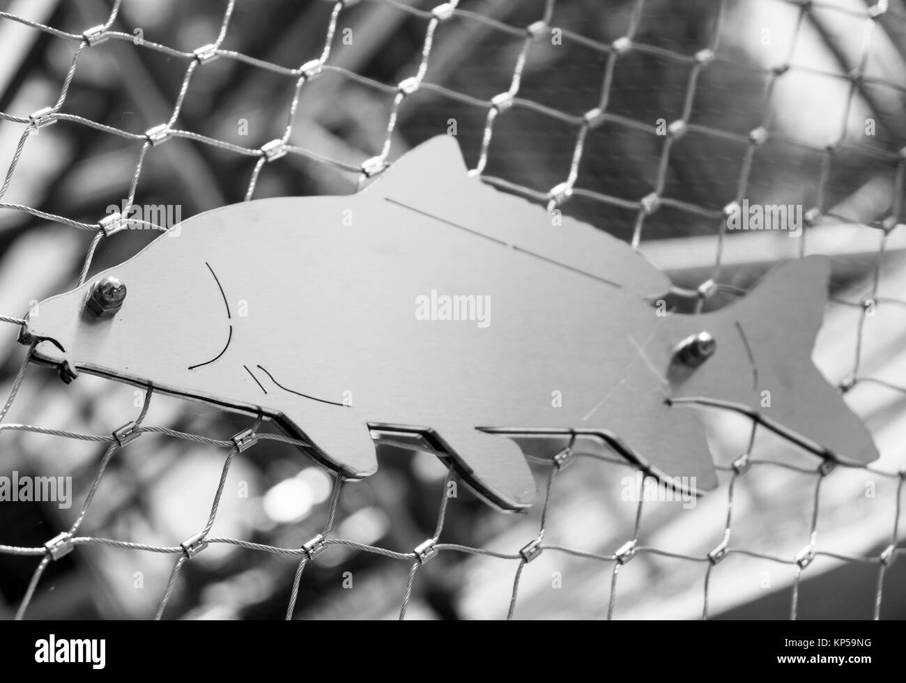 fish in a net,bad reichenhall,bavaria,germany - Stock Image