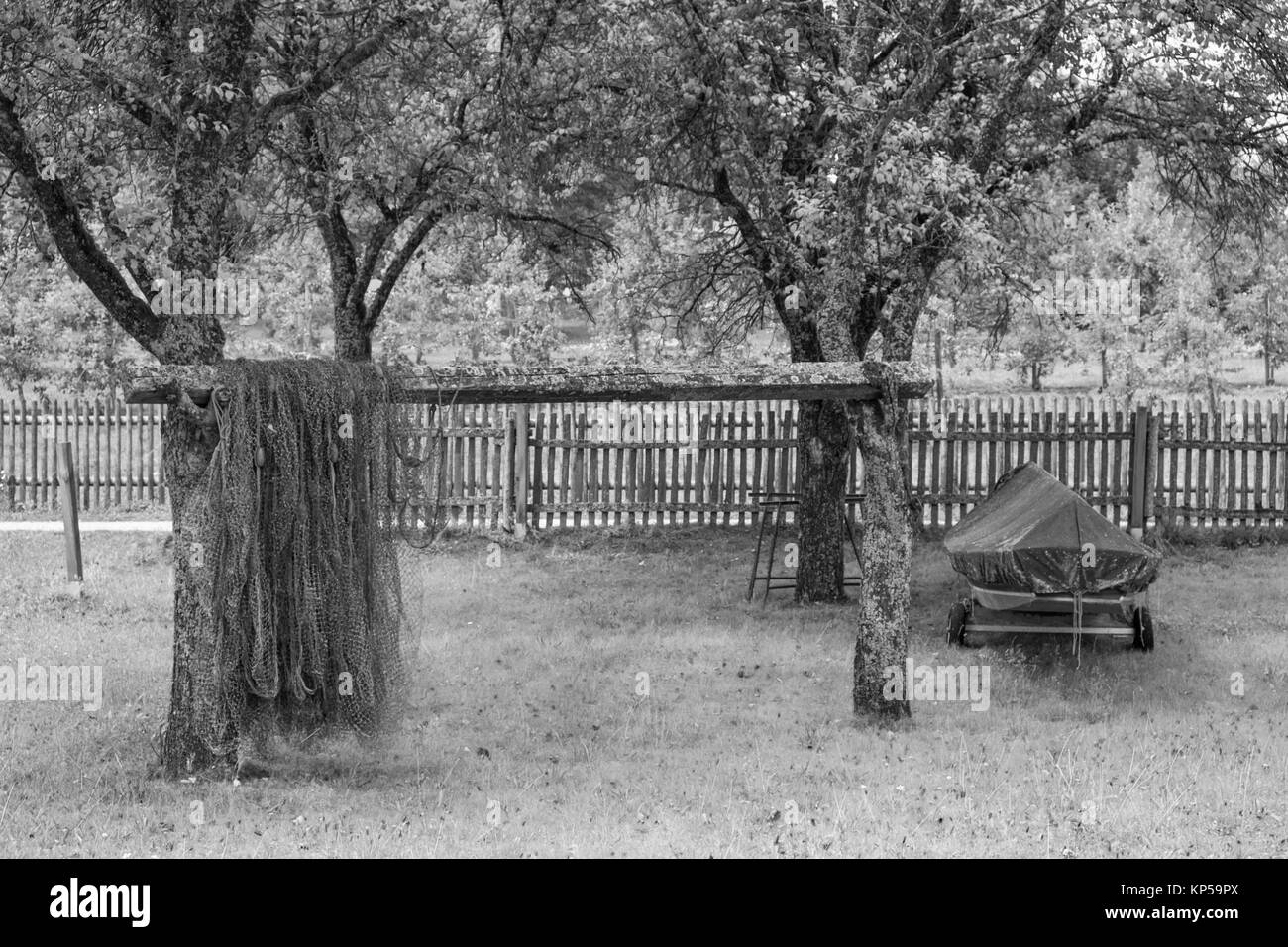 fishing net and fruit tree,frauenchiemsee,chiemgau,bayern,germany - Stock Image