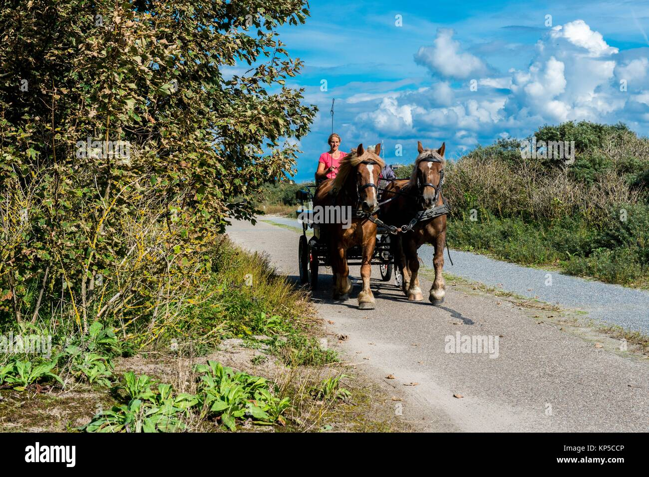 Hook of Holland, Netherlands. Horse pulled coach and drivers recreating in the dunes at the North Sea coast. - Stock Image