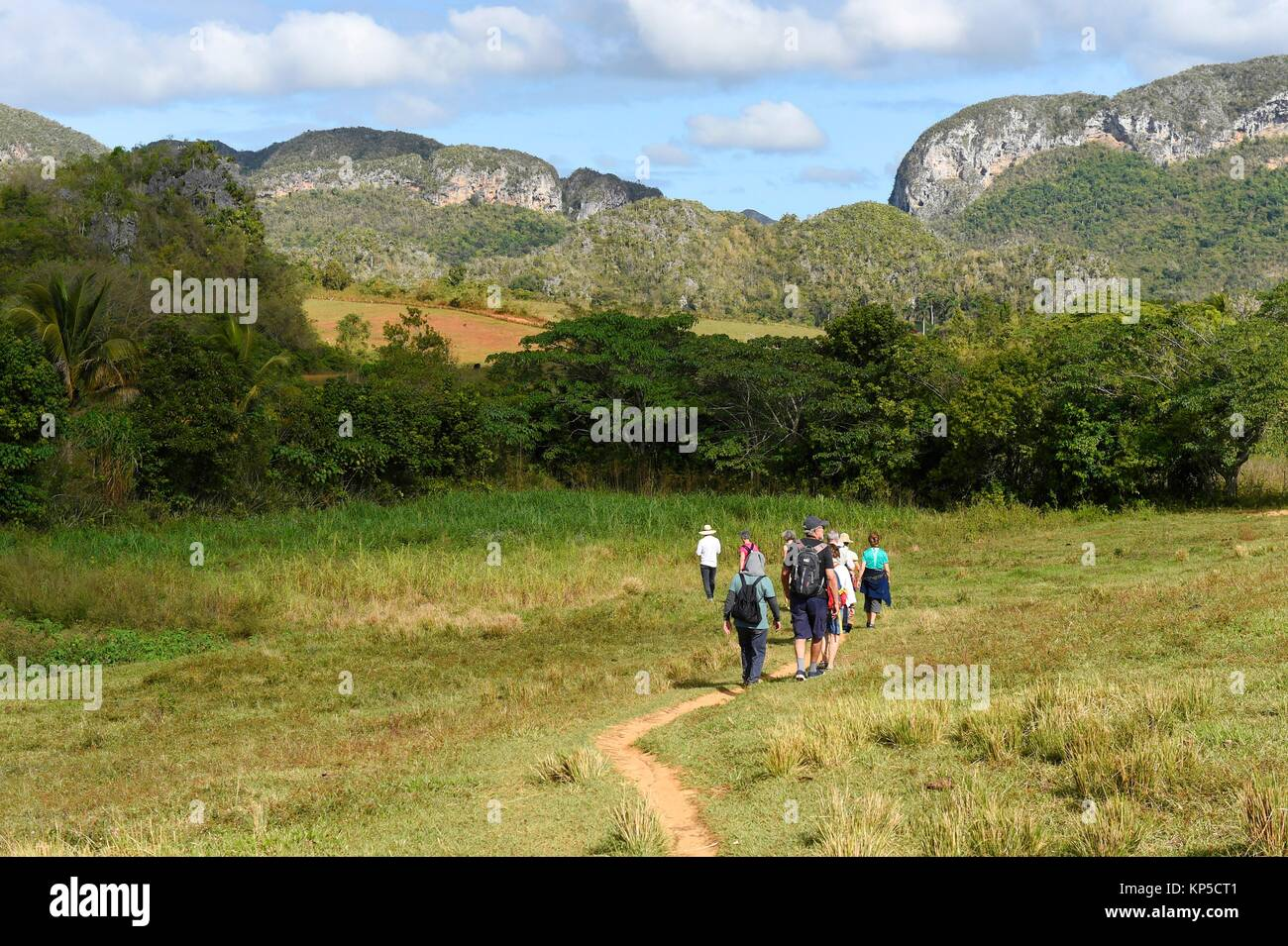 View of tourists trekking through National park of Vinales, Cuba. - Stock Image
