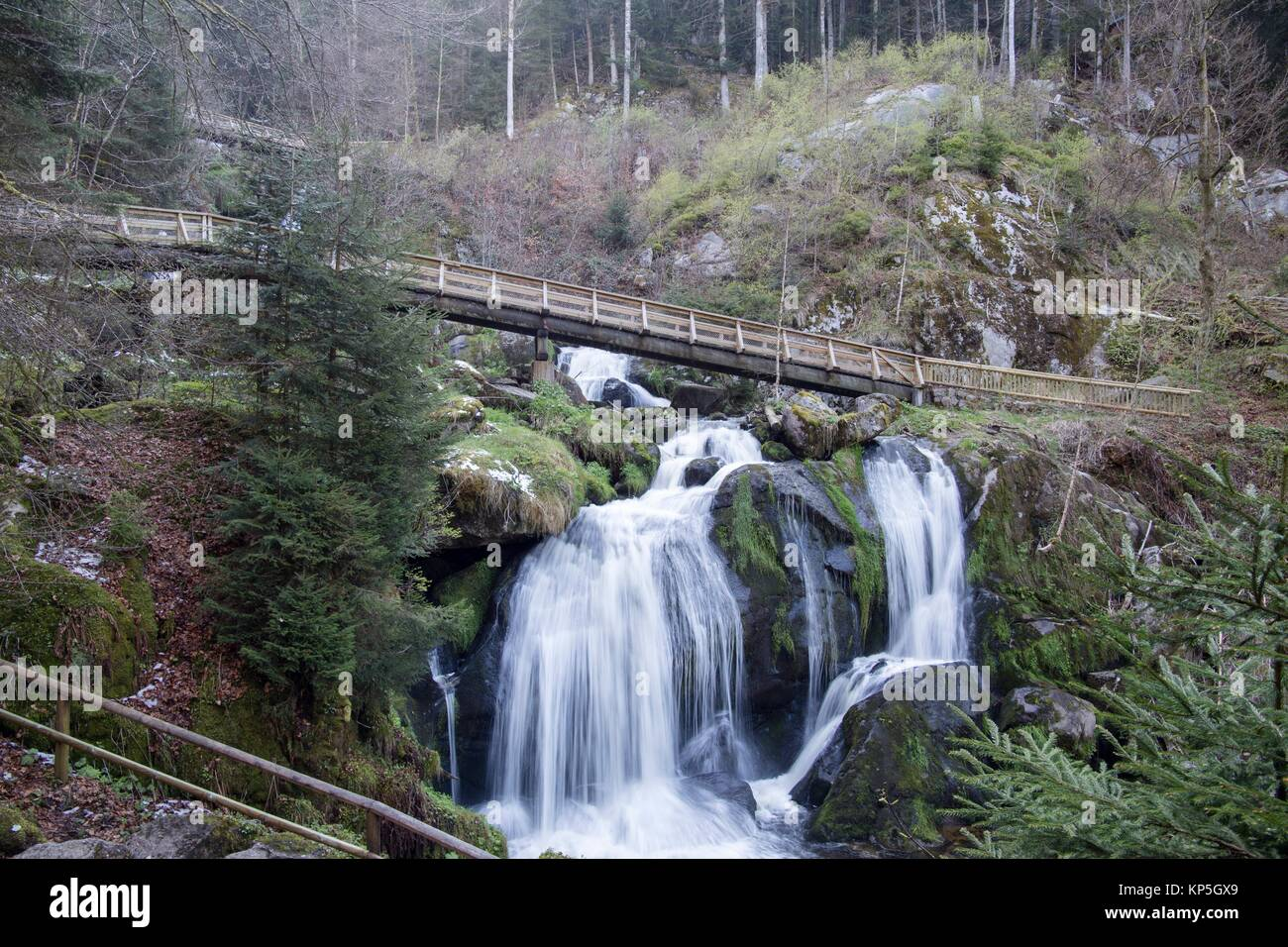 Wasserfall Triberg cascades Black forest Germany. - Stock Image