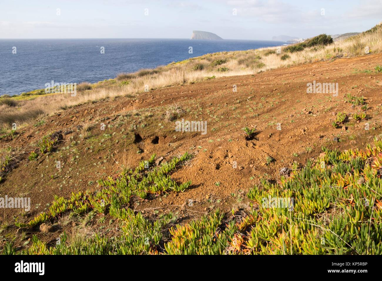 South of Terceira island with goat islands Azores Portugal. Ponta das Contendas outlook. - Stock Image