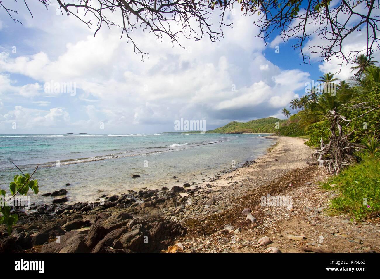 The walk of '' La Trace des Caps'' in Martinique is a 18 kilometres hikes along Cap Ferre, Pointe - Stock Image