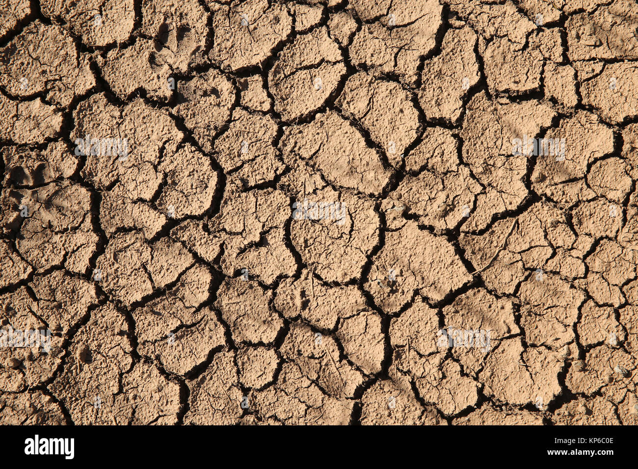 Dry cracked ground. Remuzat. France. - Stock Image