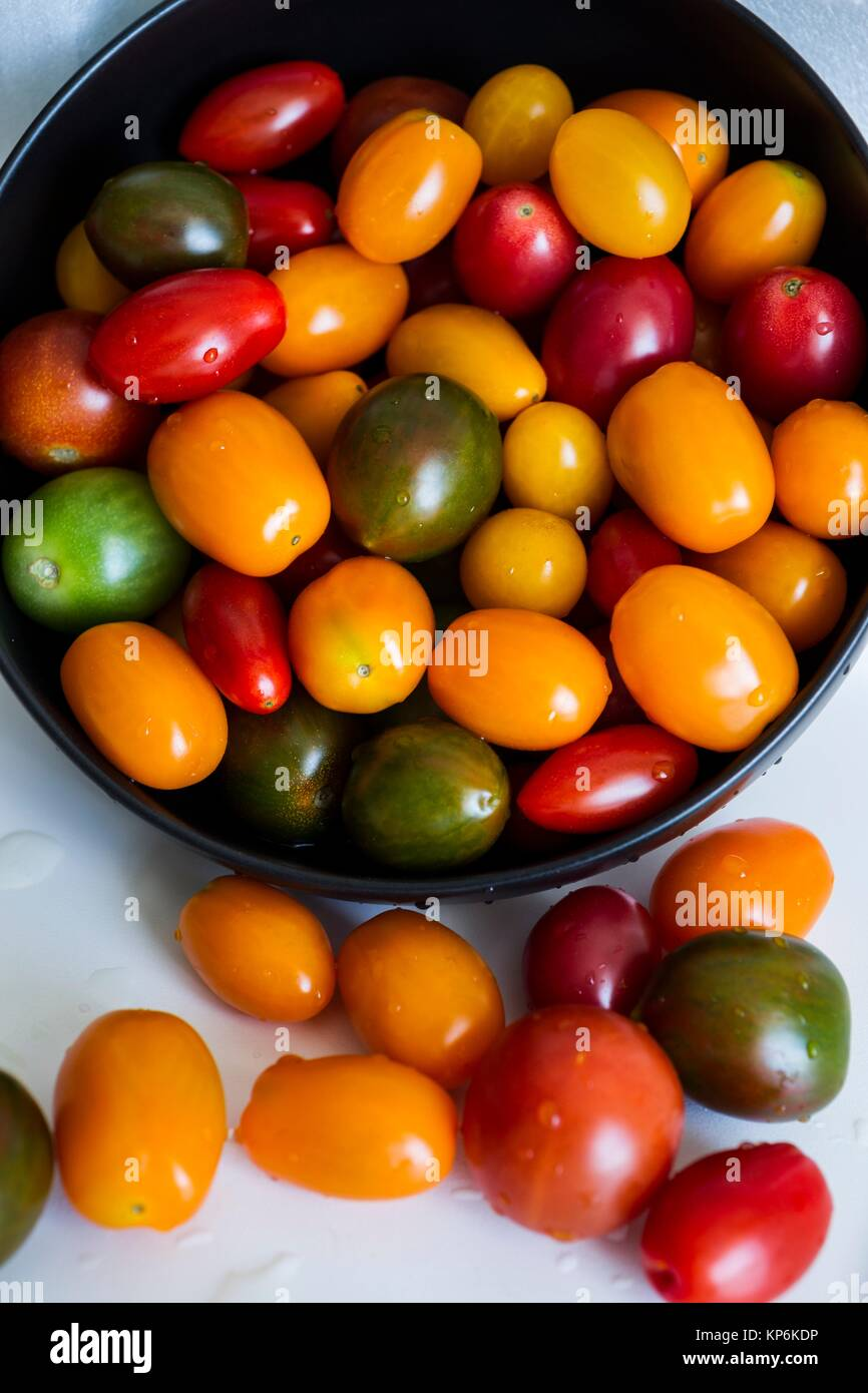 Tomato medley, assortment of small tomatoes. - Stock Image