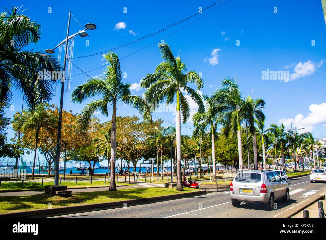 Beautiful colorful streets of the fun and cosmopolitain city and capital of Martinique, Fort de France with palm - Stock Image