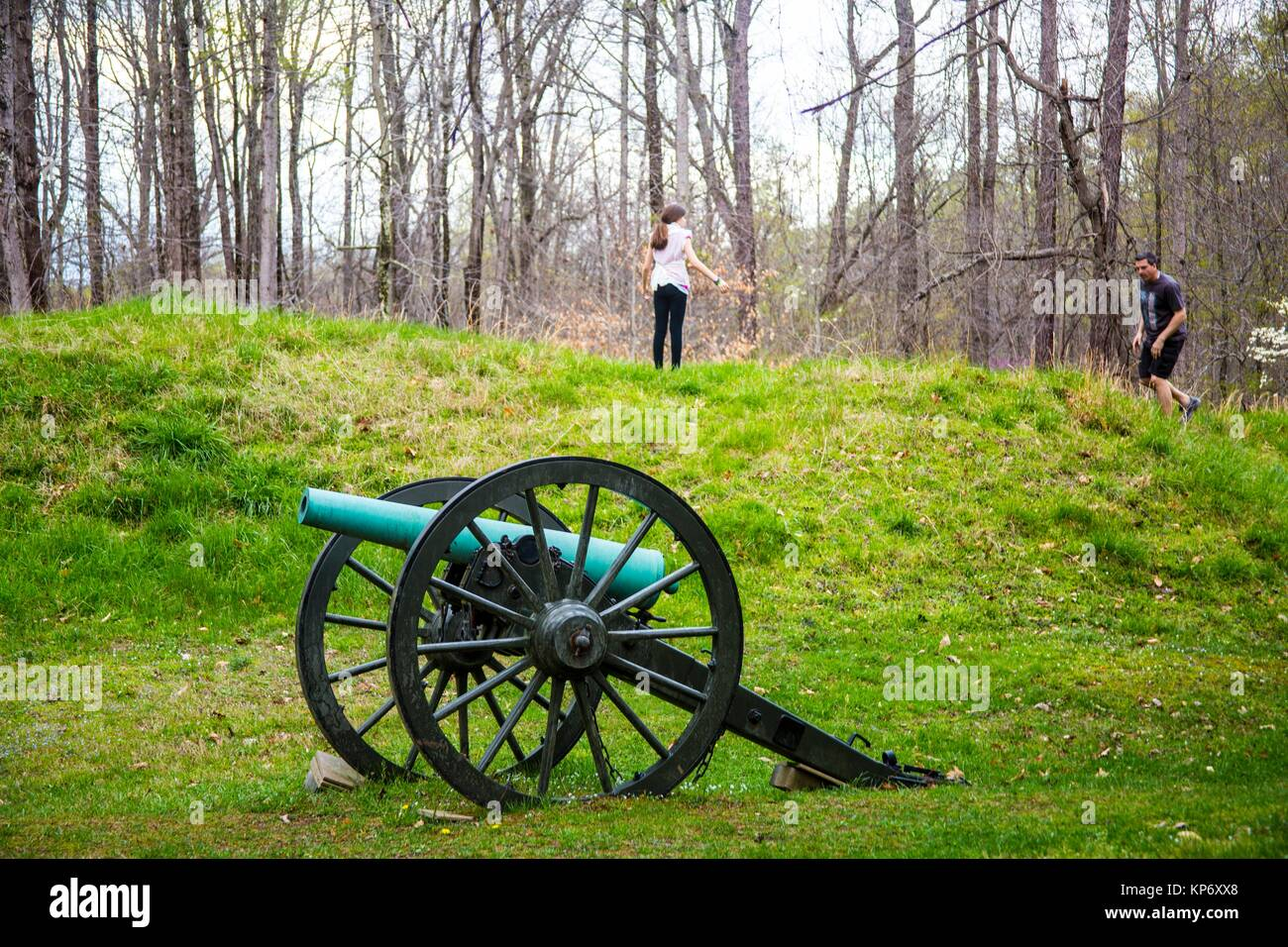 Old fashion brown wheels with green canon in the middle of an old war field - Stock Image