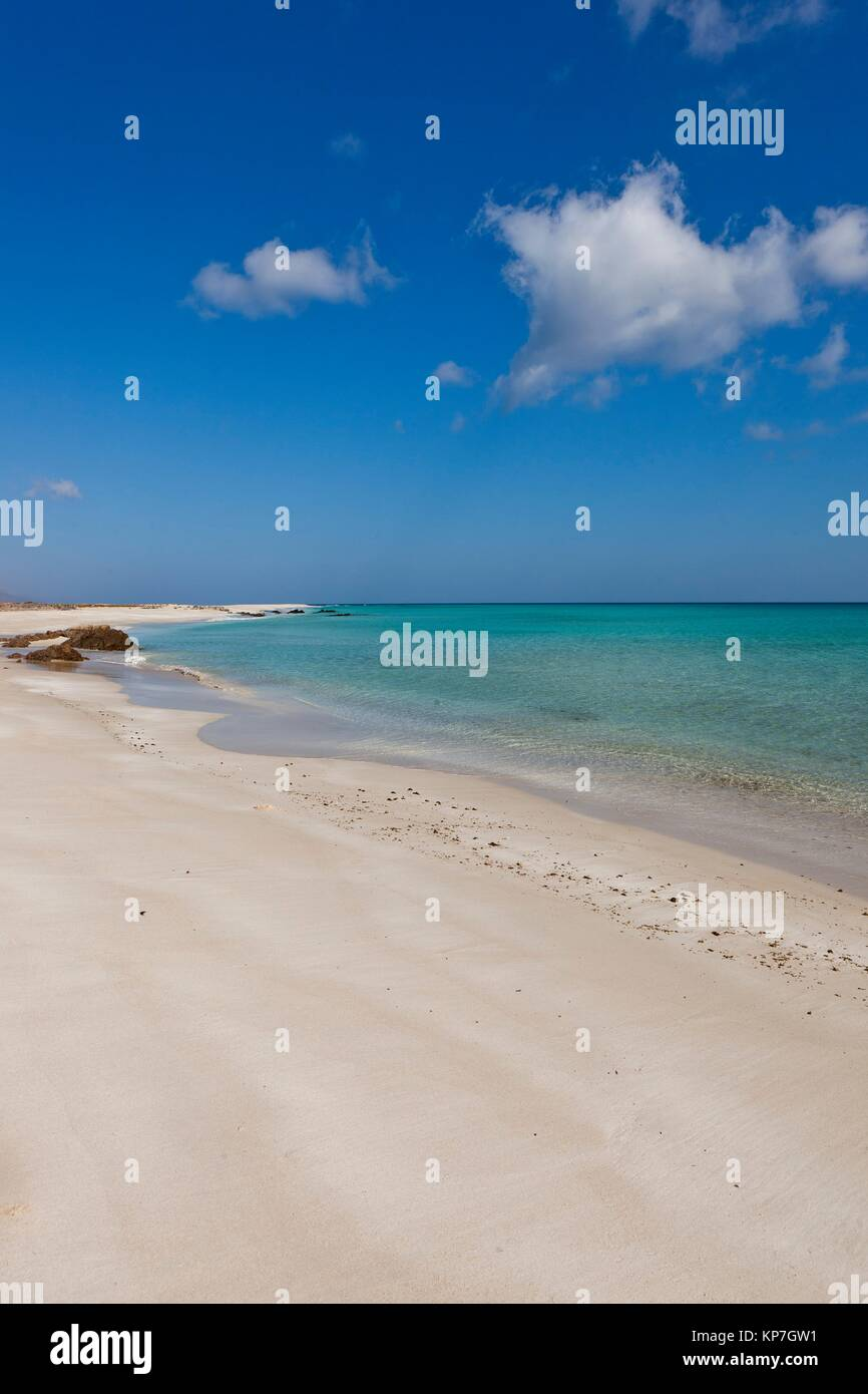 Erher, east coast, Socotra island, listed as World Heritage by UNESCO, Aden Governorate, Yemen, Arabia, West Asia - Stock Image