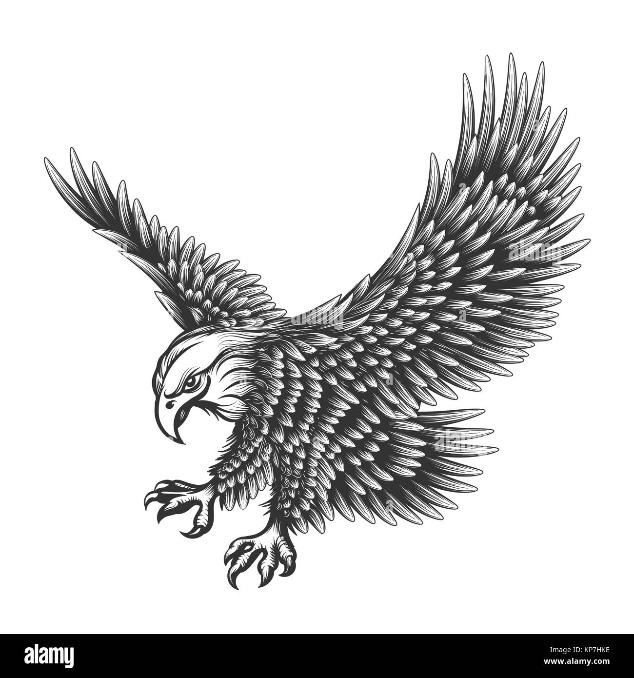 Flying eagle emblem drawn in engraving style isolated on white american symbol of freedom