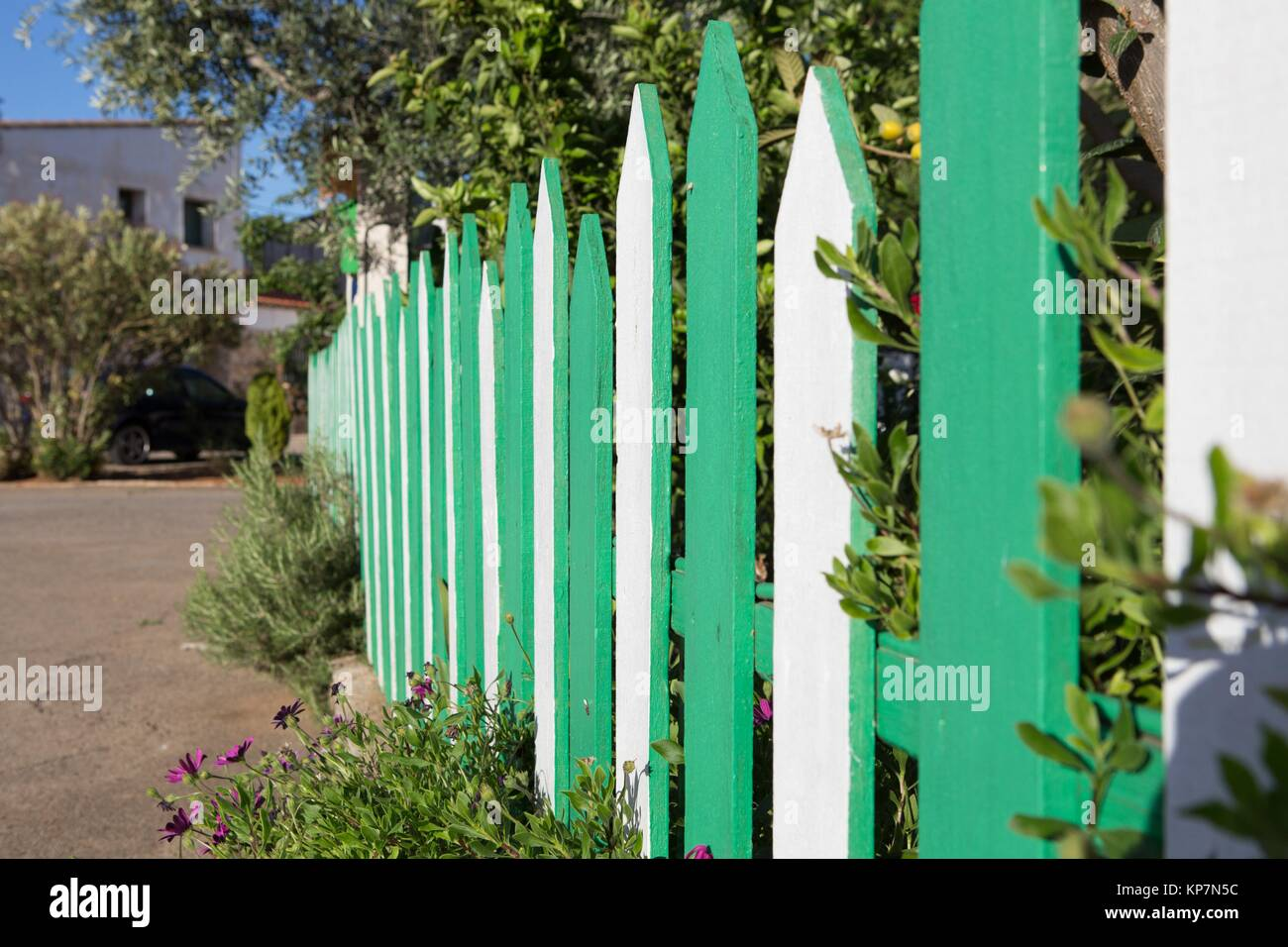 green and white fenced in a garden - Stock Image