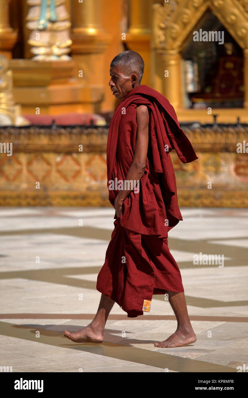 buddhist monks - Stock Image