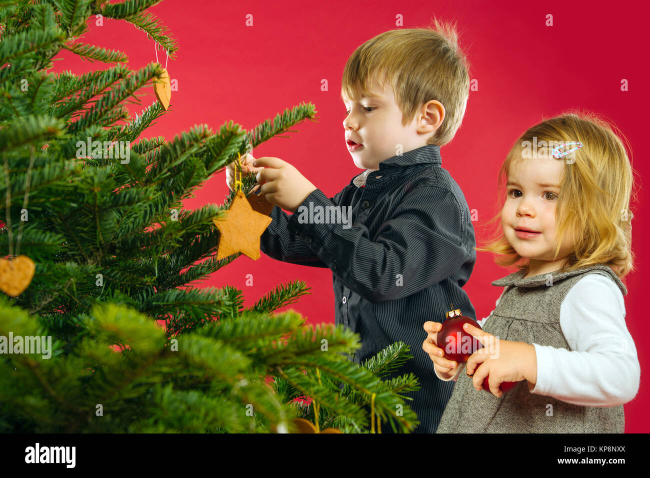 Brother and sister hanging Christmas tree decorations - Stock Image