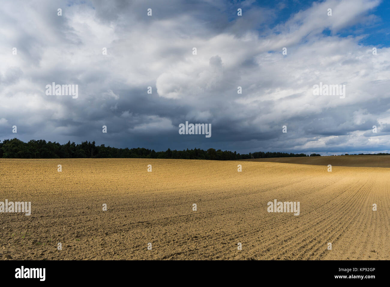 straw bales in a field in the warm sunlight with drawing,dark clouds Stock Photo
