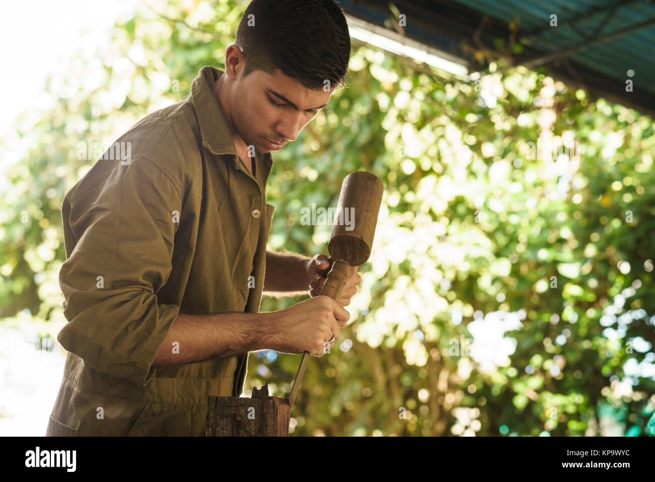 Young Sculptor Artist Working And Sculpting Wood Statue-1 - Stock Image
