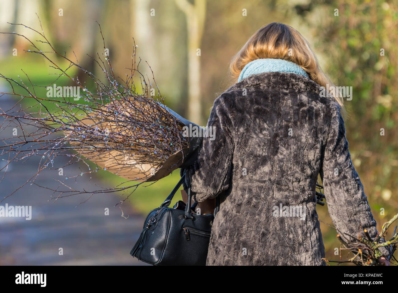 A woman walking in Winter carrying a bunch of twigs. - Stock Image