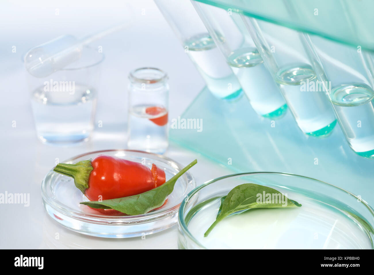 Testing red peppers for contamination with pesticides in laboratory - Stock Image