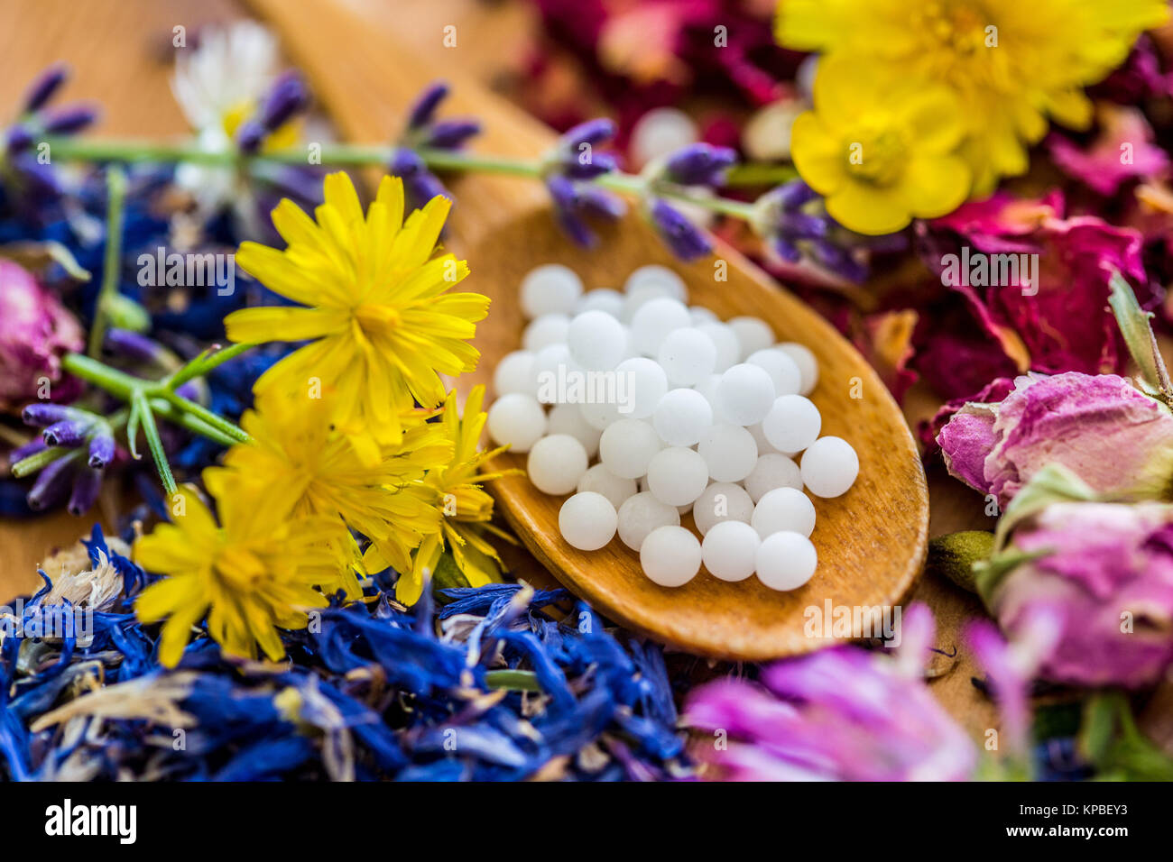 Homeopathic pills. - Stock Image