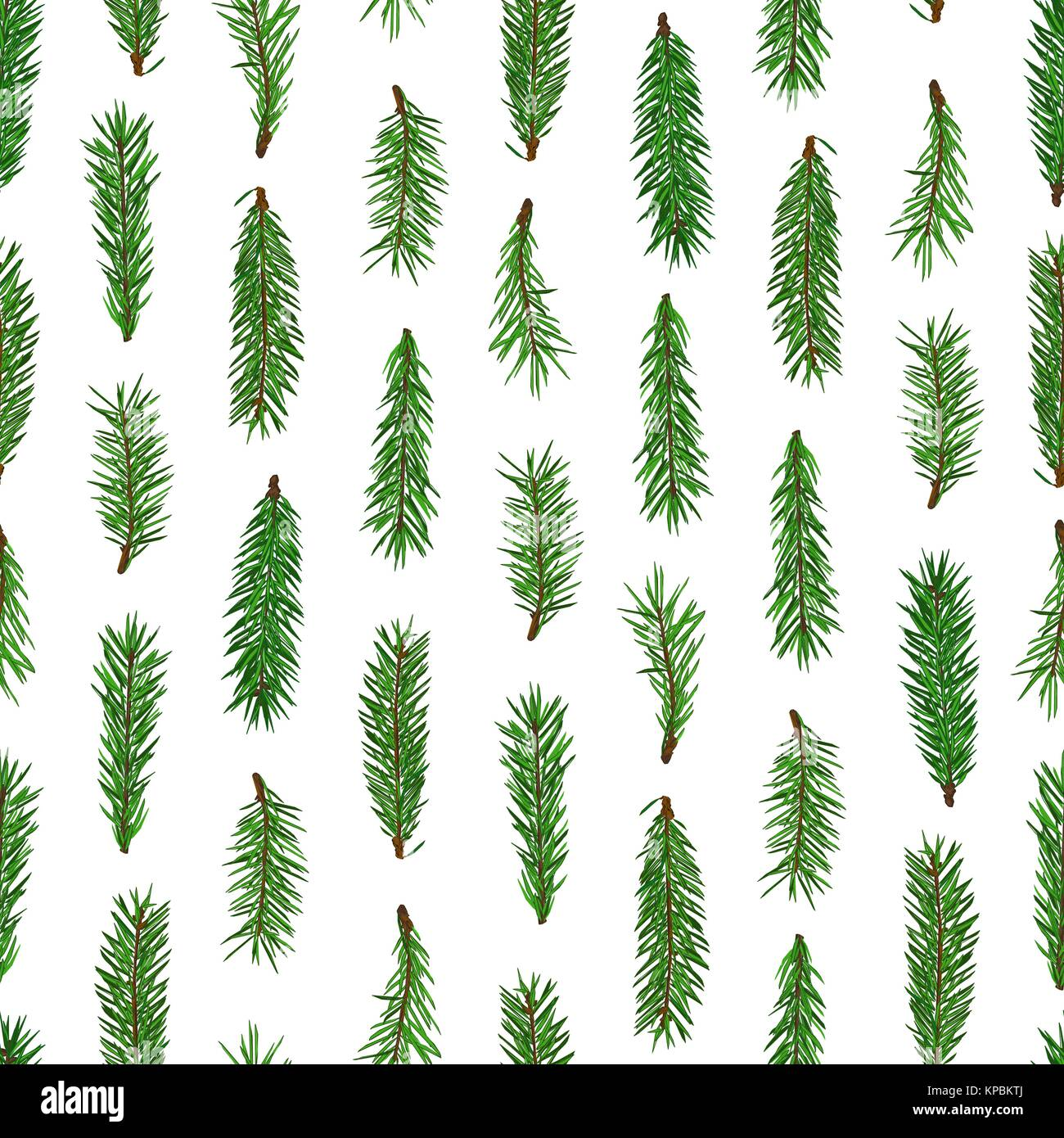 Realistic Green Fir Tree Branches Seamless Pattern On White Stock