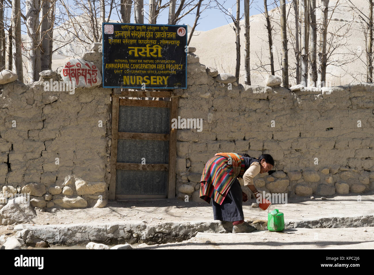 Tibetan woman filling a watering can from the communal  water supply in Lo Manthang, Upper Mustang region, Nepal. - Stock Image