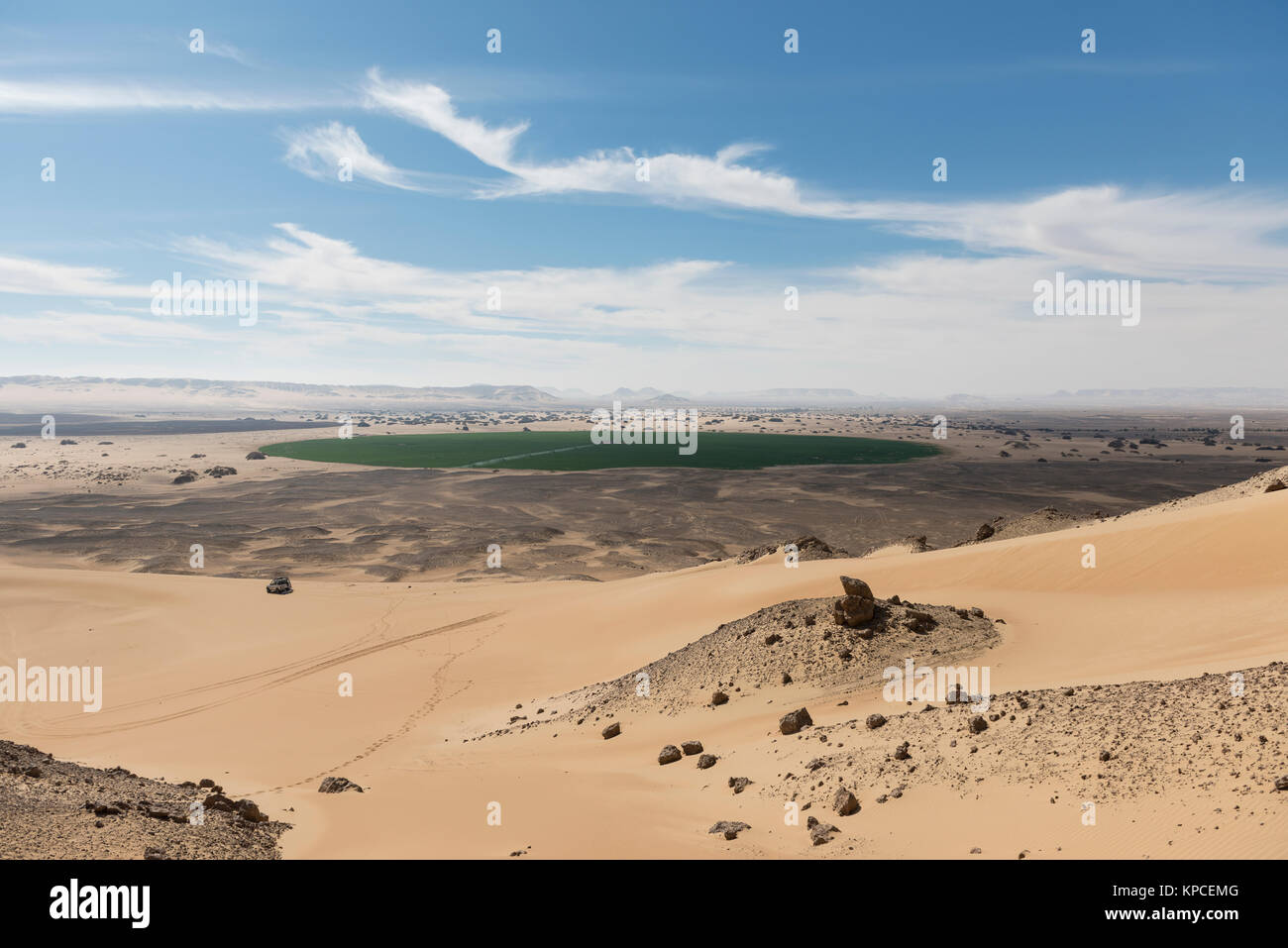Organic farming in the Western desert near Baharia Oasis - Stock Image