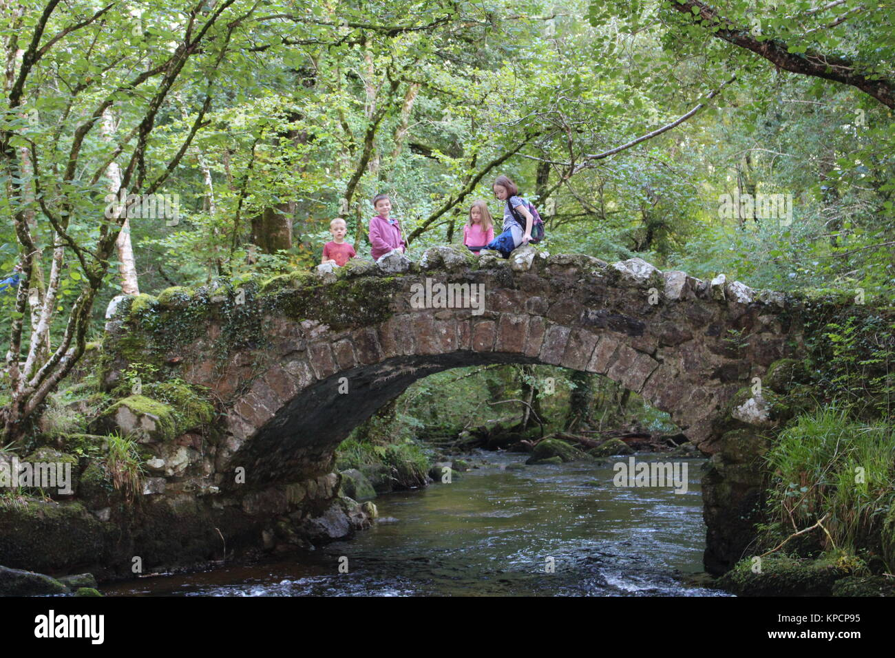 children on old bridge in forest - Stock Image