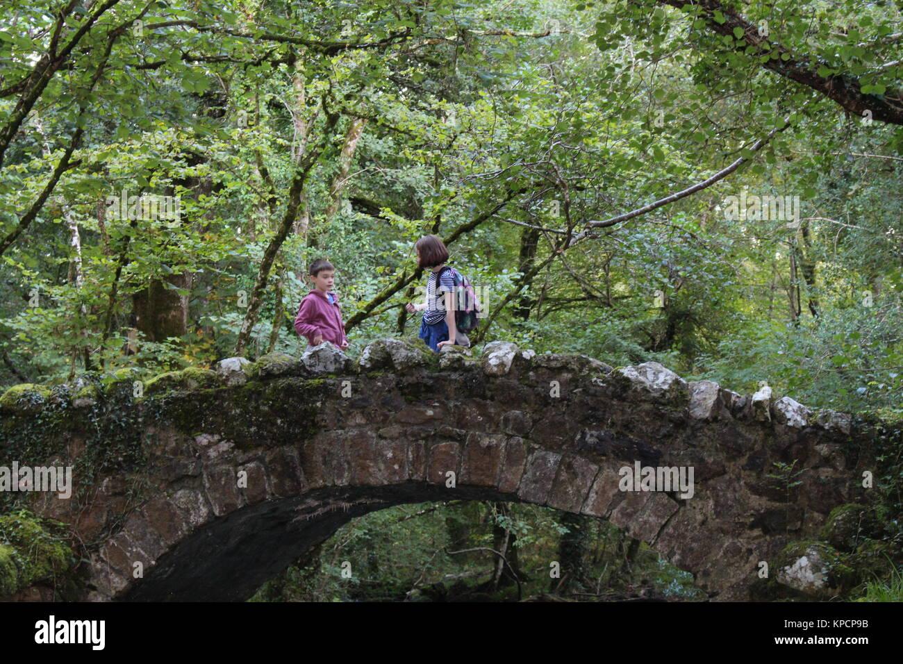 Kids on a bridge in woods, Kids outdoors, kids in woods, children in woods, children outdoors - Stock Image
