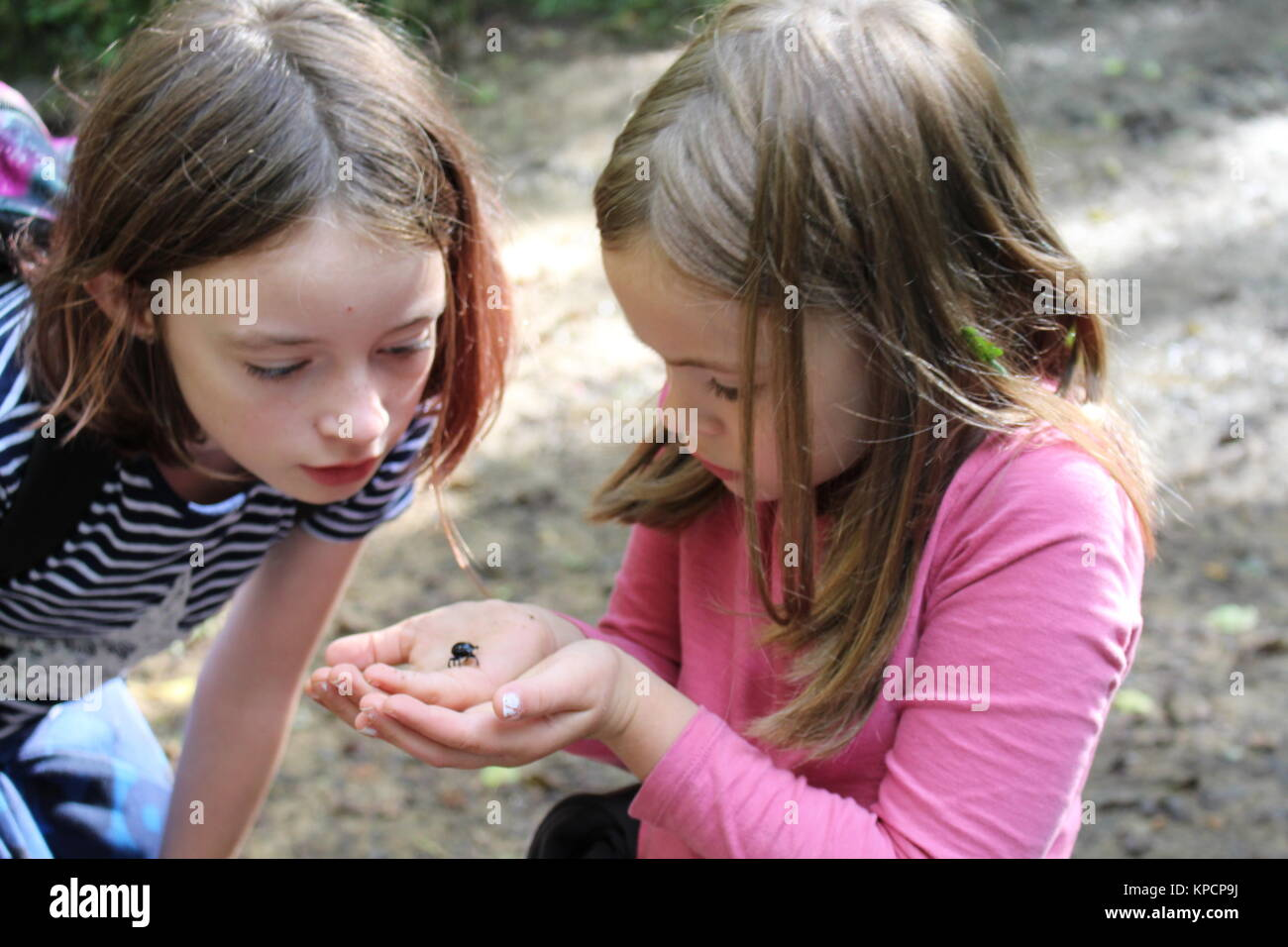 Girls with a beetle - Stock Image