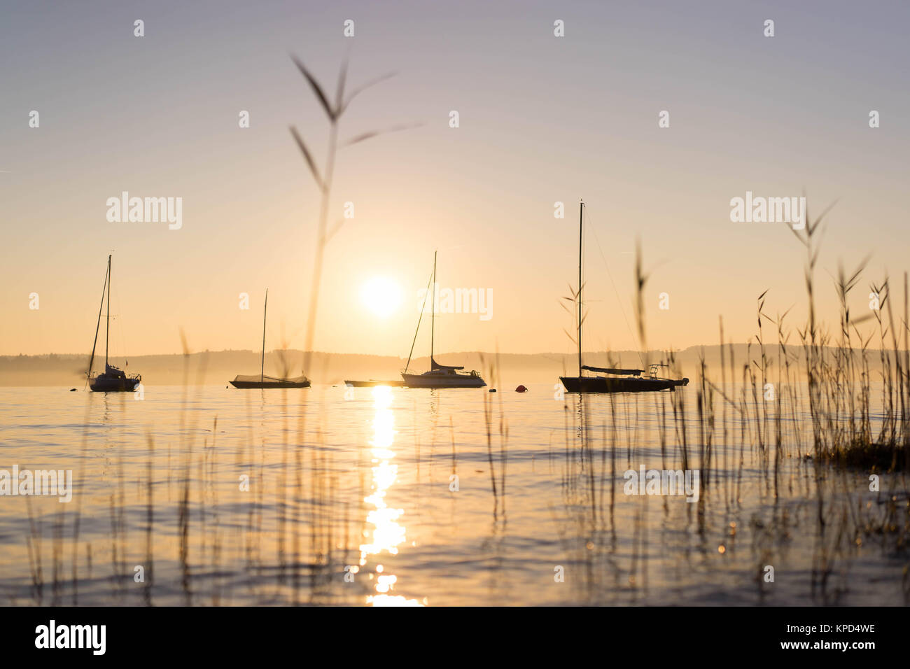 <bost profiles at sunset on the Bodensee - Stock Image
