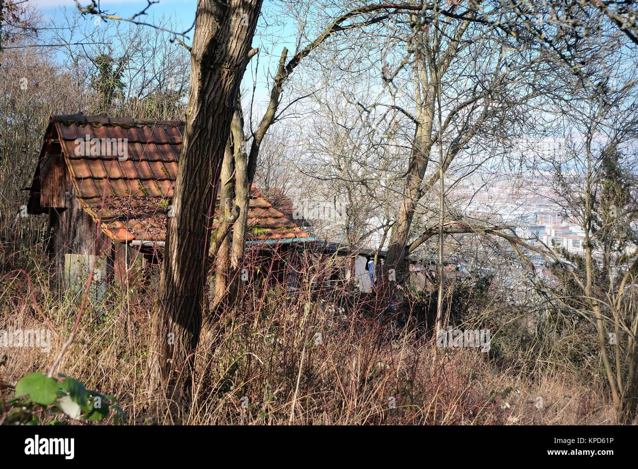 Verwilderter Garten Stock Photos Verwilderter Garten Stock Images