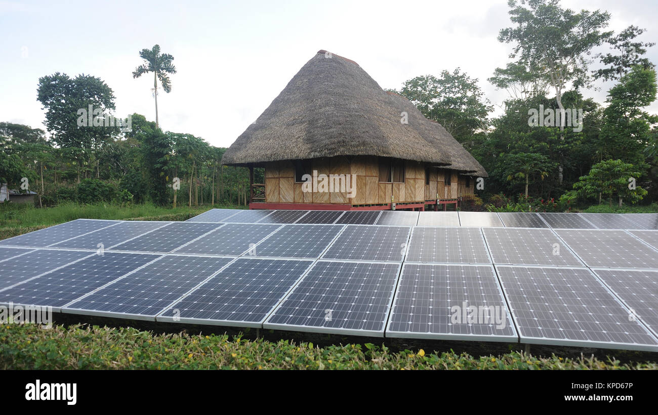 Solar panels generate electricity  outside a traditional palm leaf roofed house at the Kichwa Anangu Community on - Stock Image