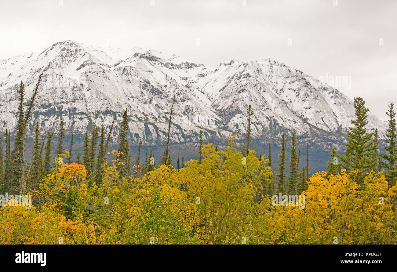 Fall Colors with Snow on the Mountains along the Alaska Highway in the Yukon Territory of Canada - Stock Image
