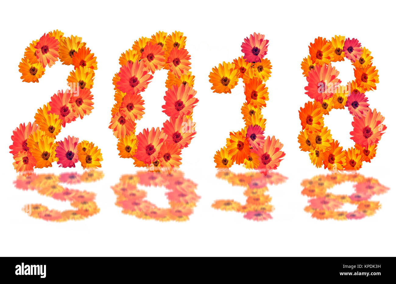 2018 flower numbers2018 change represents the new year 2018 numeral 2018 from flowers isolated on white background