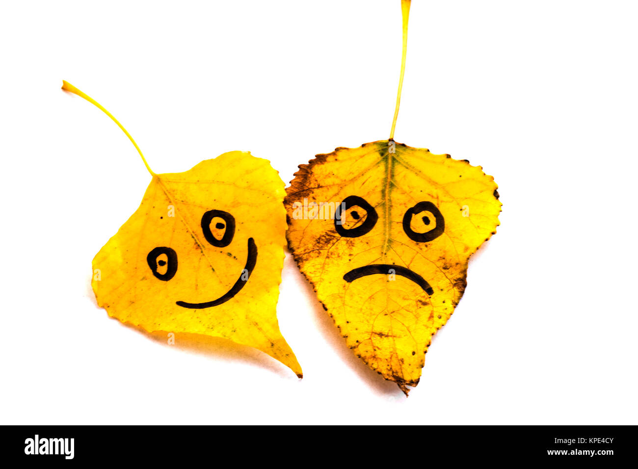 Yellow leaves with a picture of happy and sad faces on isolated on white background - Stock Image