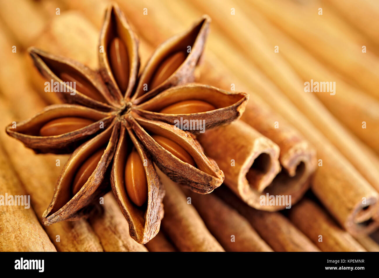 Anise star on cinnamon sticks - Stock Image