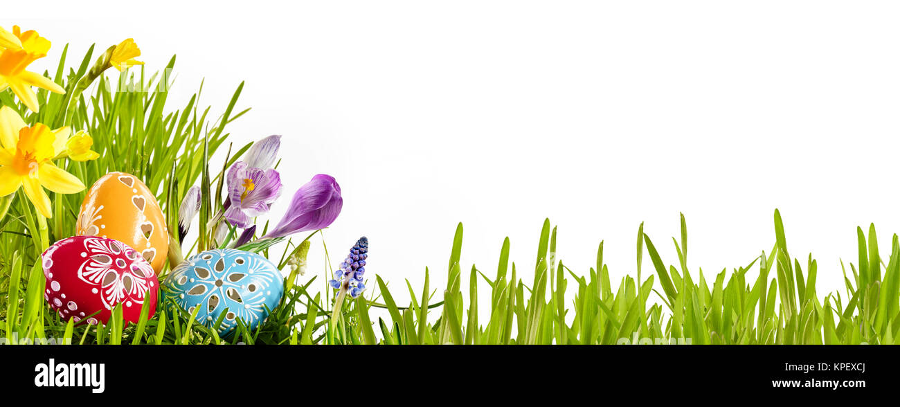 Colorful Horizontal Easter Egg Banner With Spring Flowers In A Green