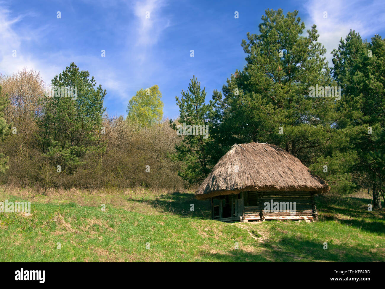 Old Small Wooden Hut In The Forest