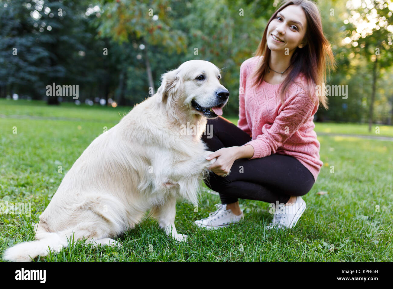 Image of woman with dog giving paw on lawn in summer park - Stock Image