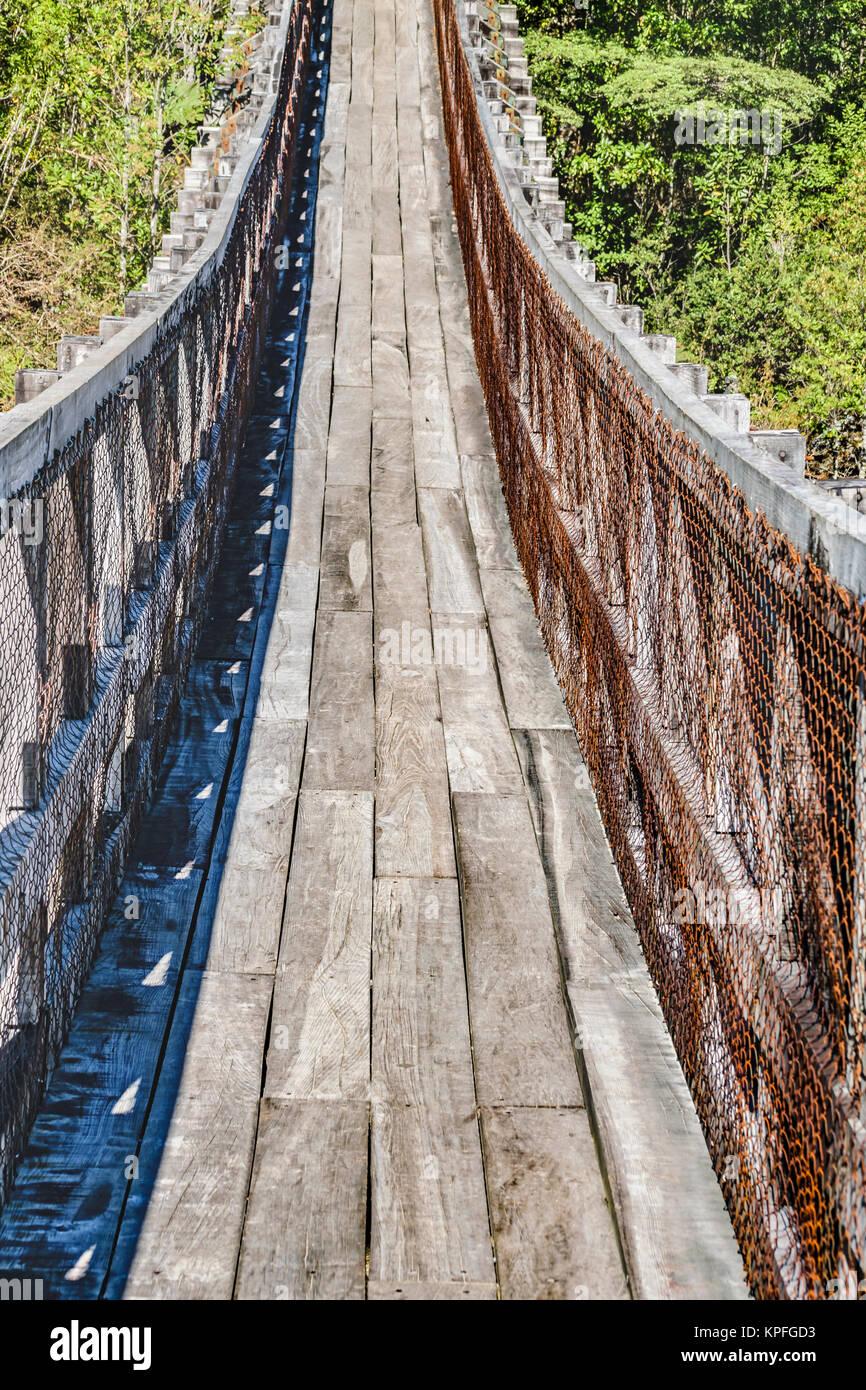 Bridge at patagonia queulat national park, Aysen, Chile - Stock Image