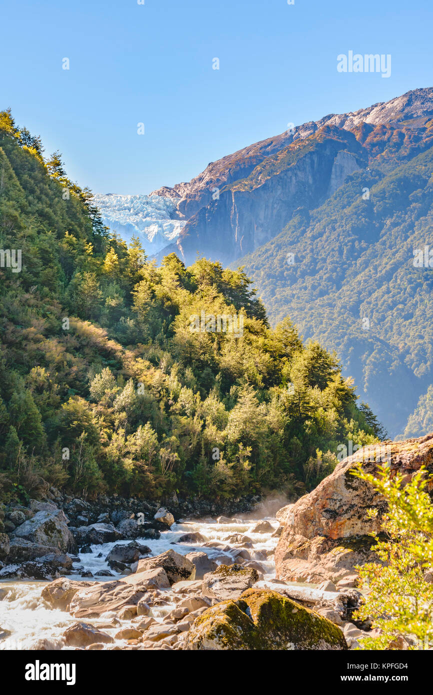River crossing forest landscape at queulat national park, aysen, chile Stock Photo