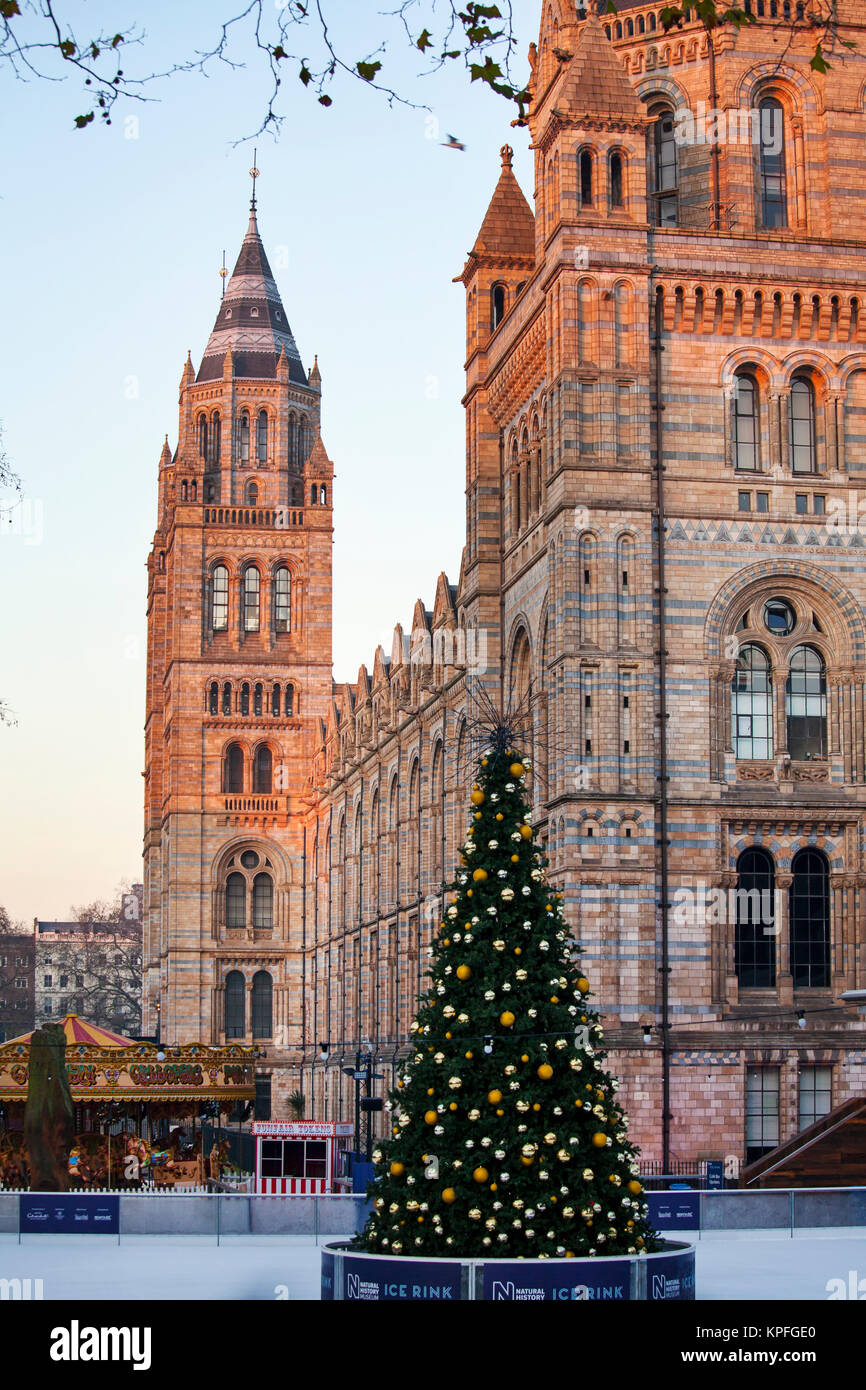 LONDON, UNITED KINGDOM - DECEMBER 12th, 2017: Ice ring with Christmas tree is created outsie Natural History Museum - Stock Image