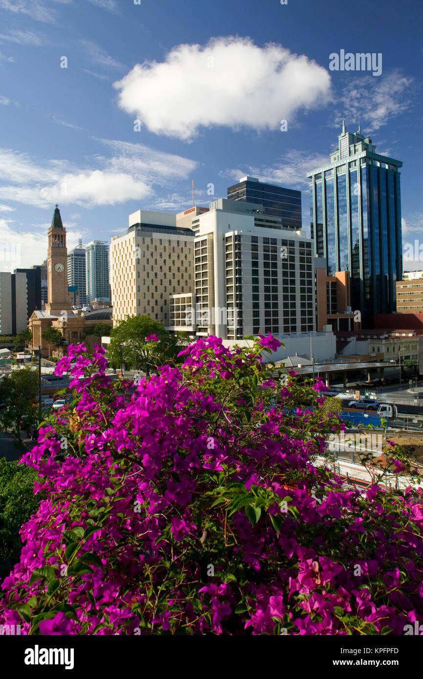 Australia, Queensland, Brisbane. Morning View towards Brisbane City Hall along Albert Street. - Stock Image