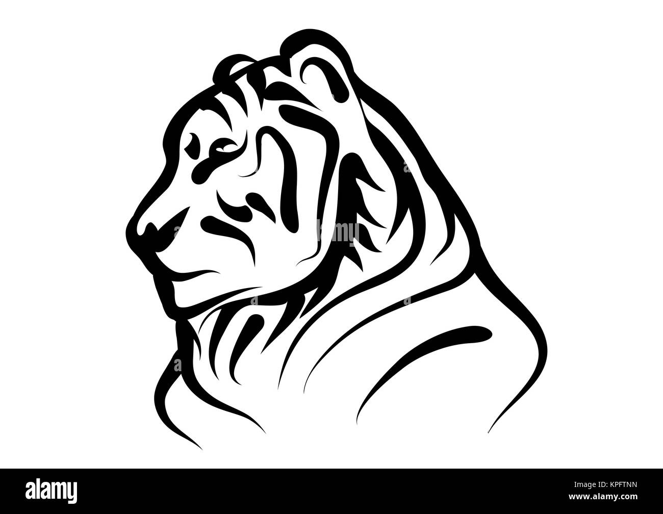 bengal tiger - Stock Image